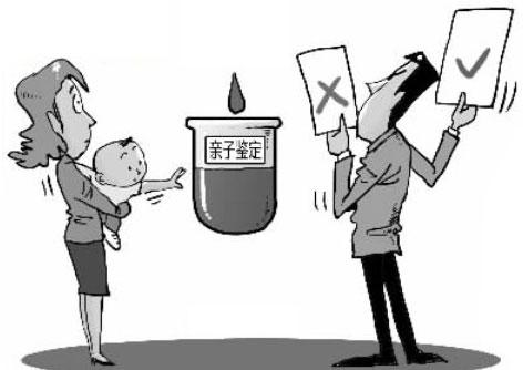 亳州亲子鉴定需要什么材料和流程
