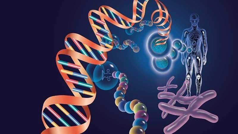 HPV基因分型检测您了解多少?