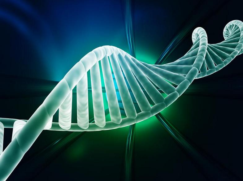 基因检测的分类方向?