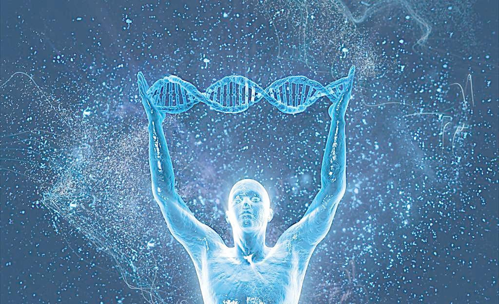 基因到是什么?