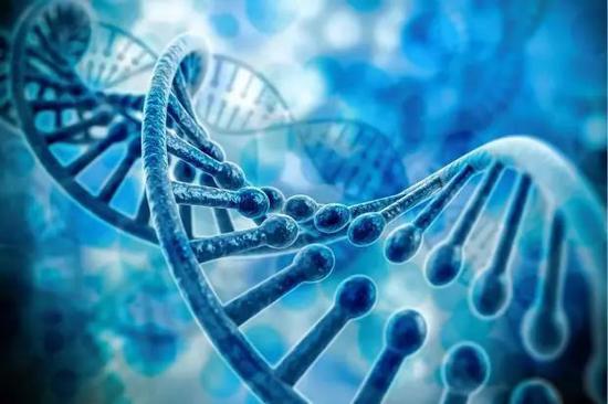 靶向治疗为何要做基因检测?