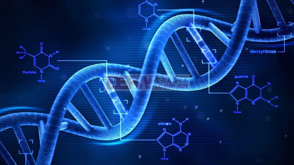 到底该不该做基因检测?