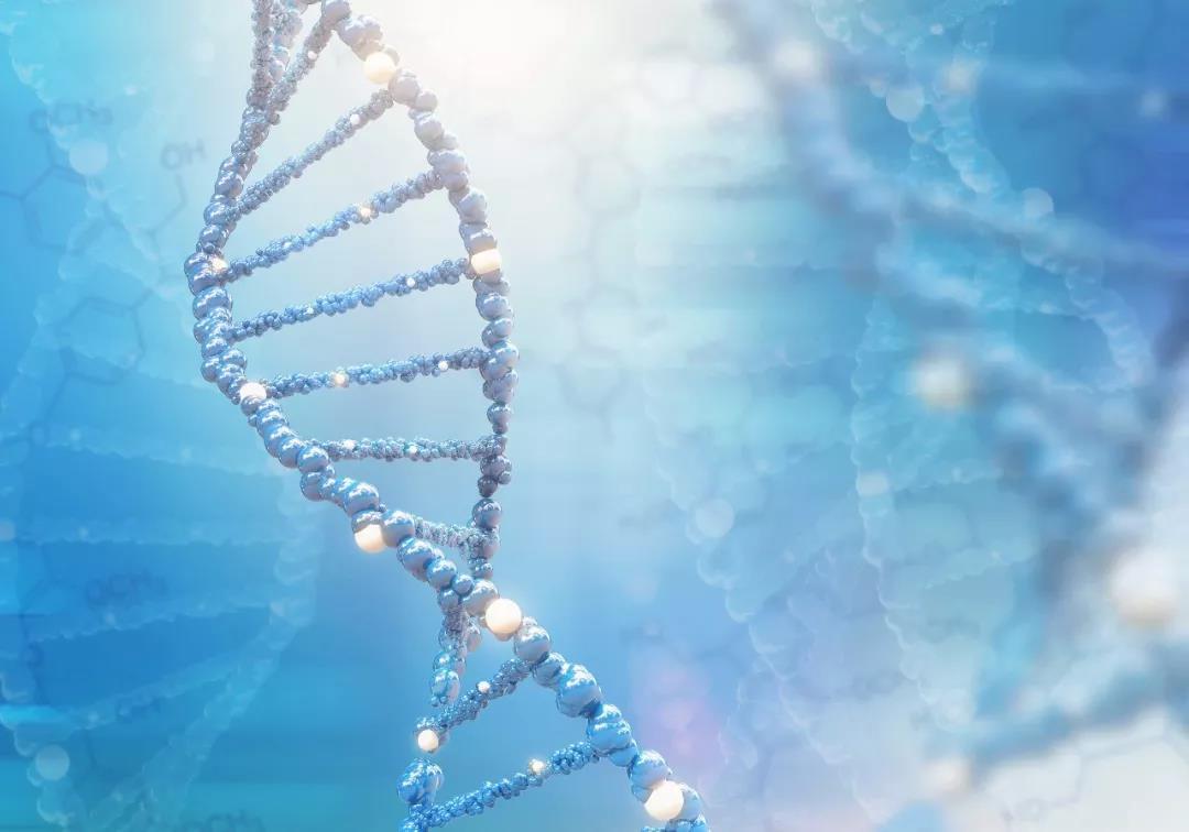 好基因探究基因鉴定的现实意义,具有前瞻性?
