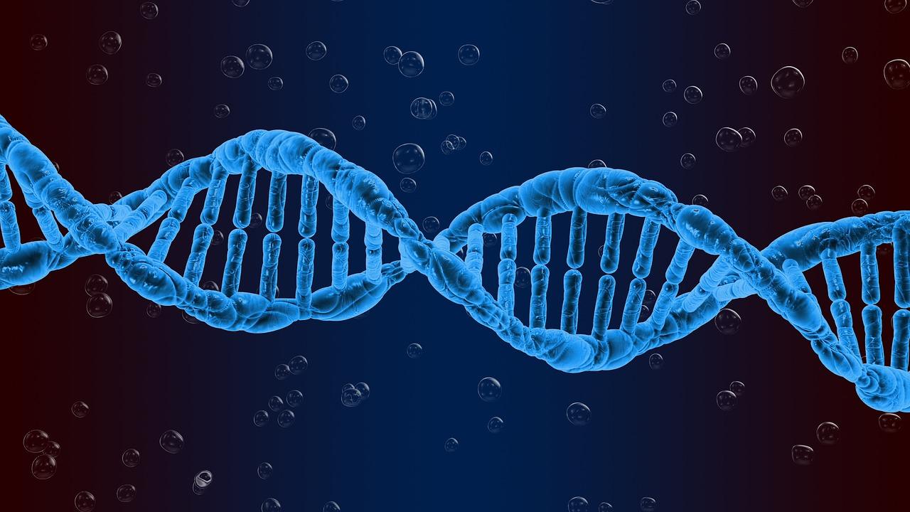 基因检测褒贬不一,到底该不该做?