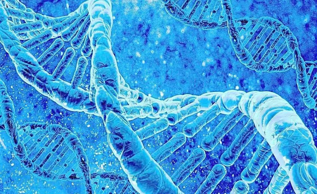 针对晚期肺癌,基因检测千万别忽略