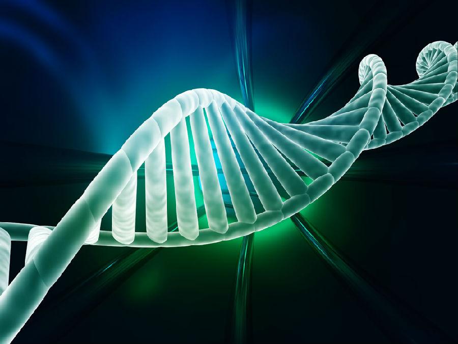 肿瘤基因检测丨每个人必读的肿瘤基因检测常识