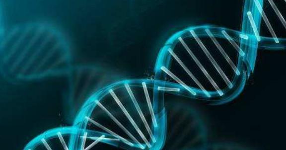 全面解析徐州基因检测