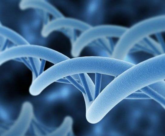 合肥亲子鉴定样本可以在家采集吗?