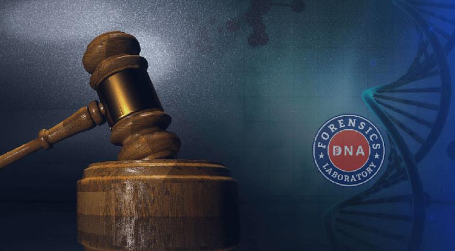 司法DNA鉴定步骤,告诉你几招正确方法