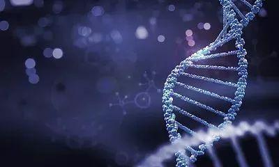 早期乳腺癌辅助治疗多基因检测应用——现状与共识